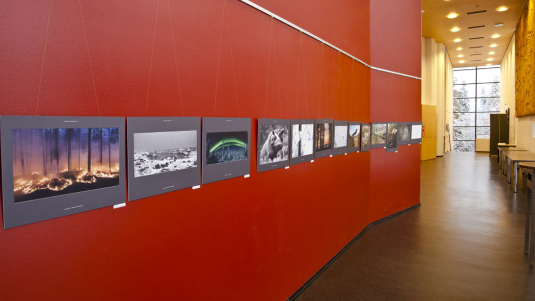 A photography exhibition hanfs on a wall in a corridor. At the opposite wall there are tables, and the long corridor eventually leads to a large window overlooking a winter landscape.