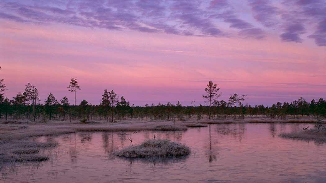 Lauhanvuori National Park - Nationalparks.fi b08bb319d93b4