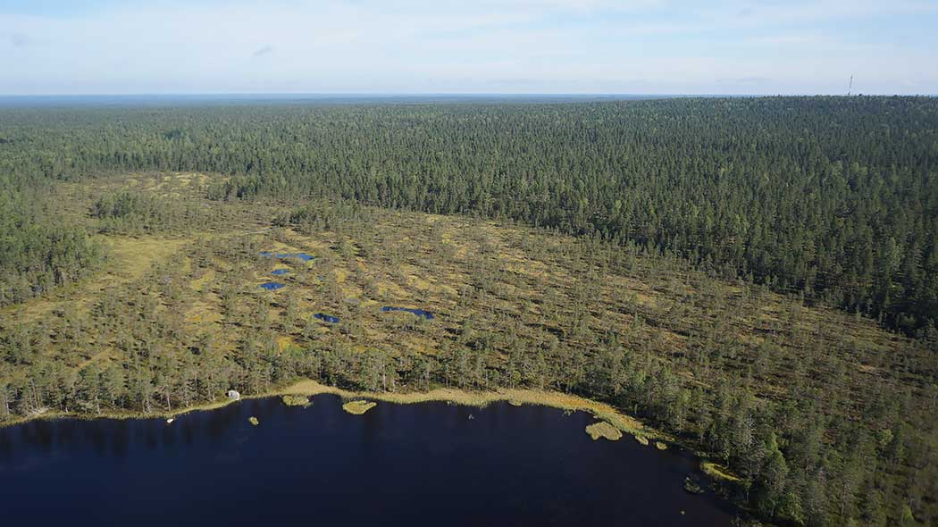 In the aerial photo it is easy to see how the Lauhanvuori hill merges with its surroundings. In front of the hill spreads the lake Spitaalijärvi. Photo: Timo Halme and Tuomo Häyrinen