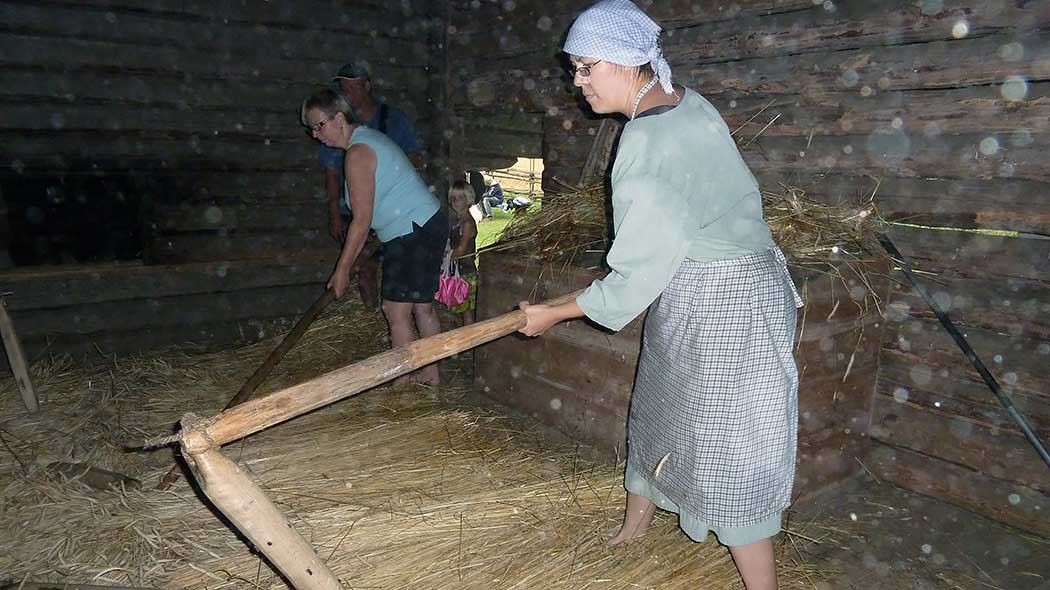 A hiker and the hostess of a traditional homestead are threshing rye in the kiln with a flail.