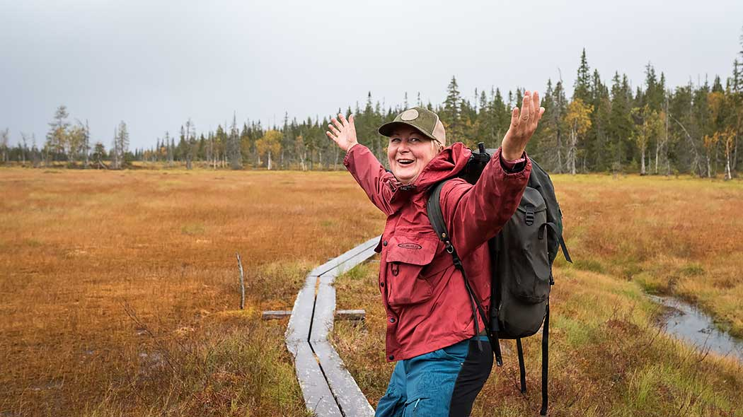 A hiker posing on duckboards passing through a bog.