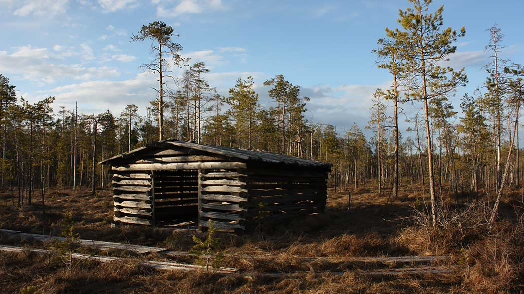 Hay shed in Salamanperä Strict Nature Reserve. Photo: Maarit Similä.