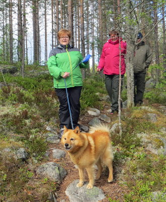 Three hikers and a dog on a leash walking on a forest path.
