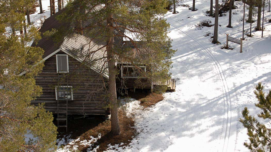 A snow-covered yard, a cabin with a porch and a tall tree can be seen on a photograph taken from the top of a tower. There is a skitrack crossing the yard and trailsigns.