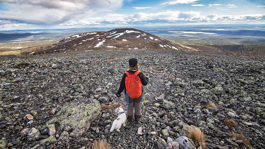 A woman with a red backpack walking across a stony fell. He has a small white dog on a leash. Several fells can be seen on the horizon.