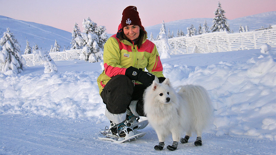 A smiling woman with a dog during the polar nigh are looking towards the camera. The woman is wearing snowshoes. A fell lit in red colours and snow-covered trees can be seen in the background.