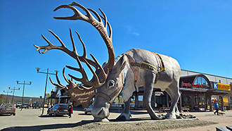 A reindeer statue in front of Jounin kauppa grocery store.