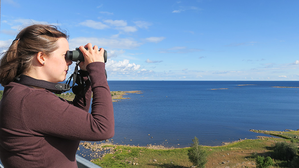 Instructions And Rules In Bothnian Bay National Park Nationalparks Fi