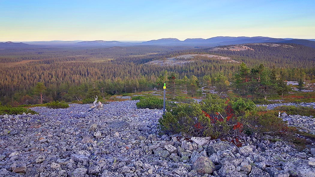 Views from Ukko-Luosto fell towards Pyhä. Image: Netta Kuivalainen