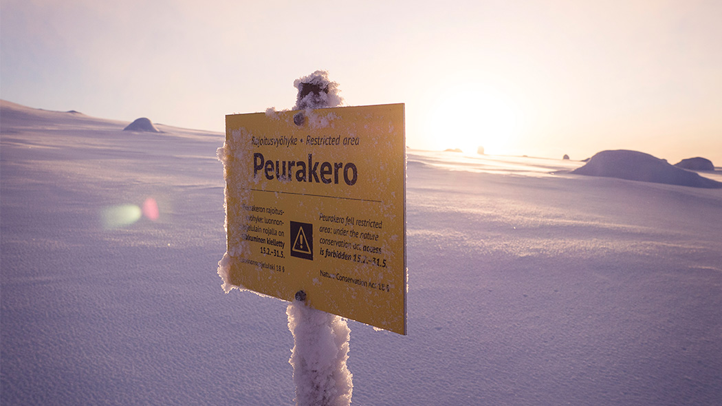 There is a restricted area at Peurakero, it is in effect between 31.5.-15.2. Image: Anna Pakkanen