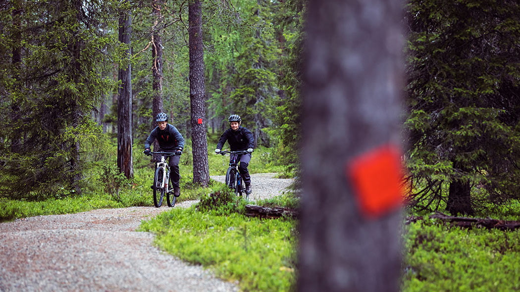 Two cyclists biking on a gravel trail in the nature.