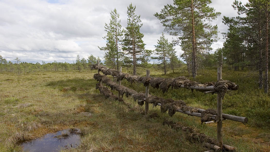 History of peat digging. Photo: Ari Ahlfors.