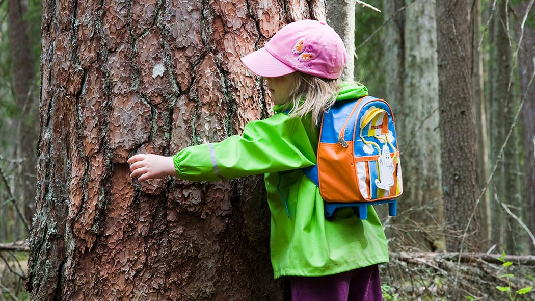 A child with a backpack hugging a big pine. The child's arms are not reaching around the big tree.