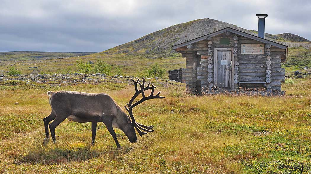 In wilderness area there are many wilderness huts for hikers. Photo: Seija Olkkonen.