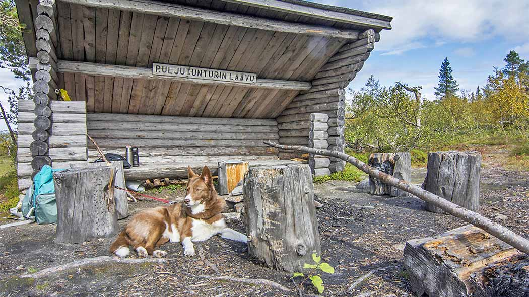 The shelter near the Puljutunturi Fell is not publicly maintained, so leave no trash there and keep the place tidy. Photo: Seija Olkkonen.