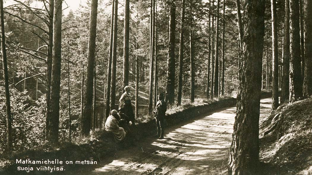 Forest is a cosy shelter for travellers. Punkaharju in 1922, Photo; Lusto / Torsten Rancken