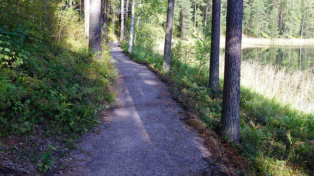 The Harjureitti trail is 4 km long. Photo: Anne Pyykönen