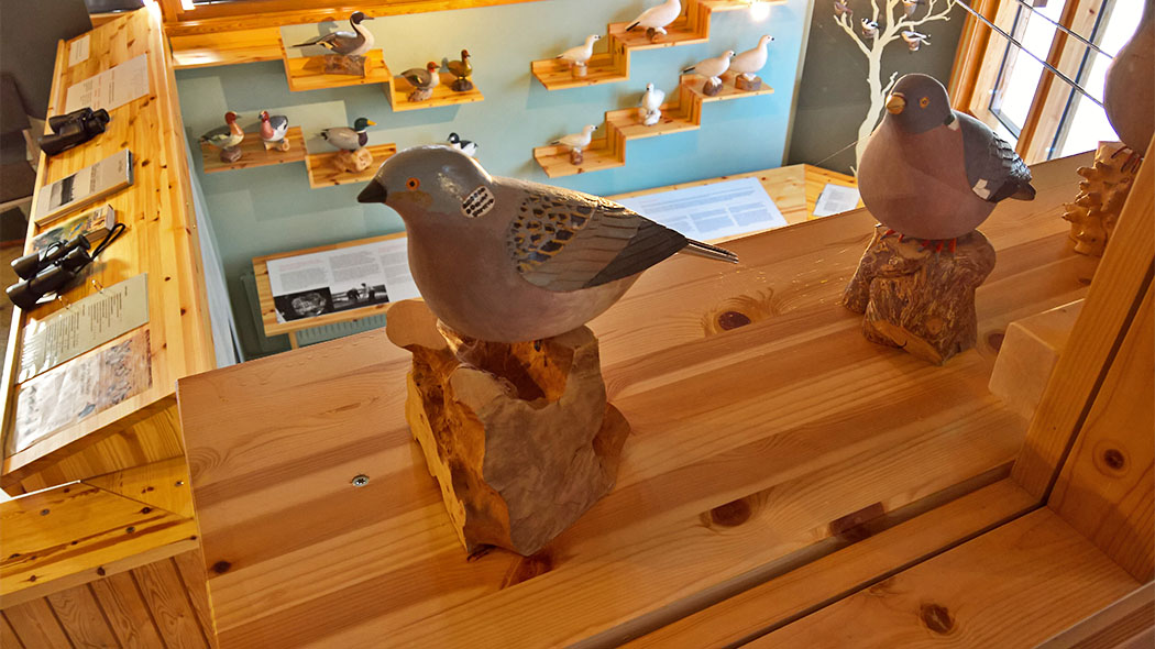 A collection of painted wood carvings depicting different kinds of birds.