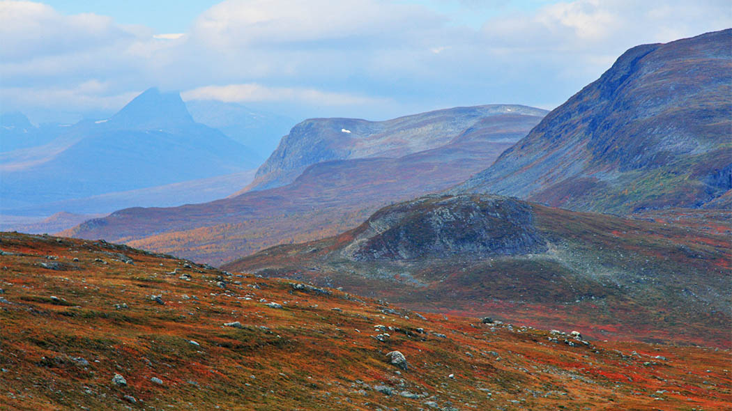September is great time to hike in Malla Strict Nature Reserve. Photo: Juha Kalaoja.