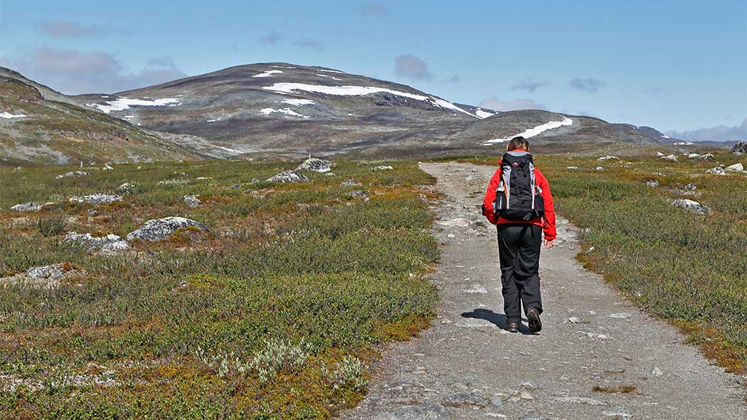 A hiker walking along a path through a fell landscape.