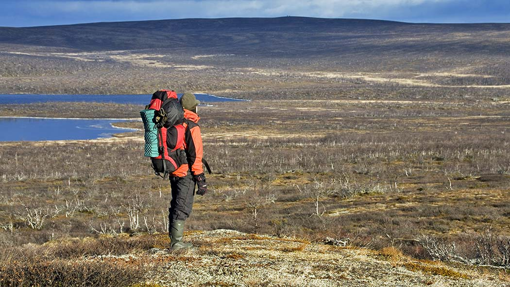 A hiker in the Tarvantovaara Wilderness Area. Photo: Markus Sirkka.