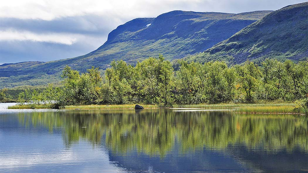 In the foreground a lake, in the background a mountain slope with birch forest at the bottom. It is a sunny summer day.