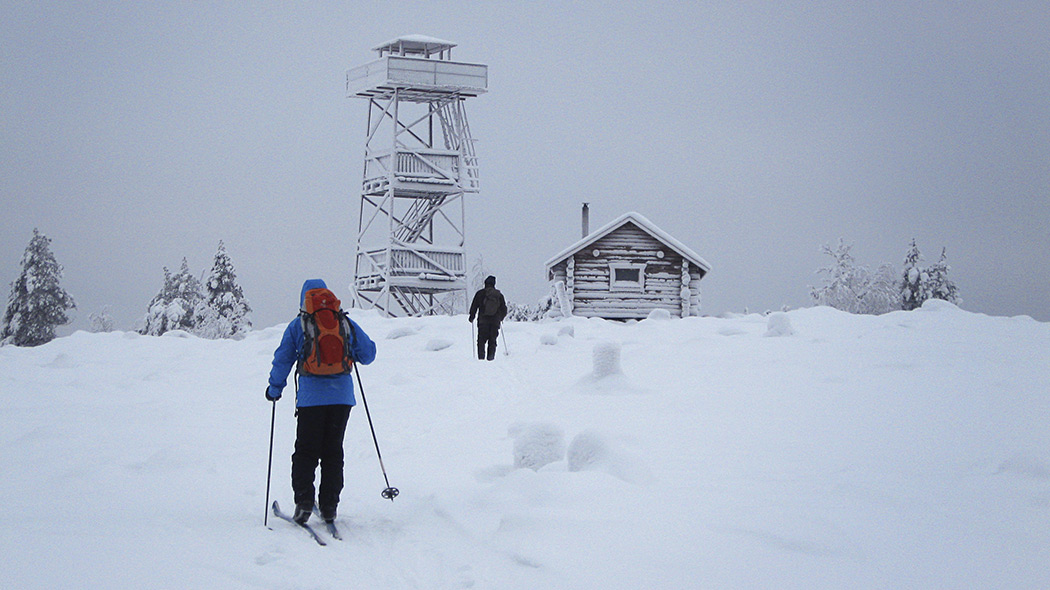 Two persons are skiing towards a frost-covered bird watching tower and a logwood hut.