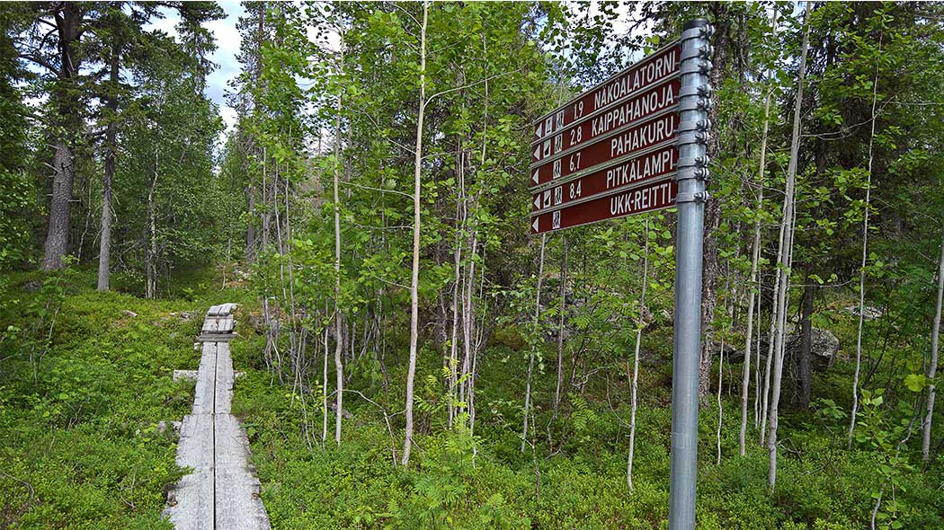 Duckboards that lead to a forest with signs that show towards trail UKK-reitti and inform the route lengths in kilometers to the places along the trail.