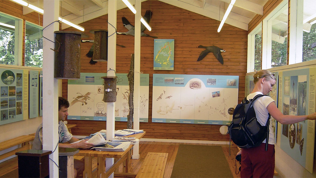 Two persons at an exhibition. There are information boards, photographs, birdfigures and birdhouses at the exhibition. One person is sitting next to a table.