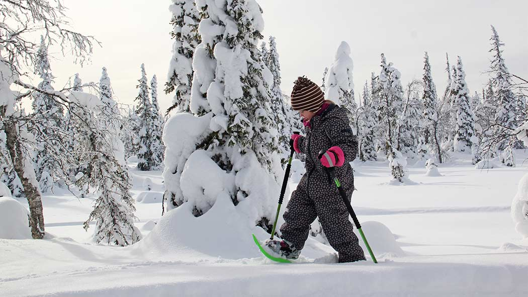 A child snowshoeing in a snowy forest.