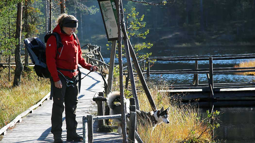 A woman and a dog are standing on the duckborads by the lake. The dog is on a leash.