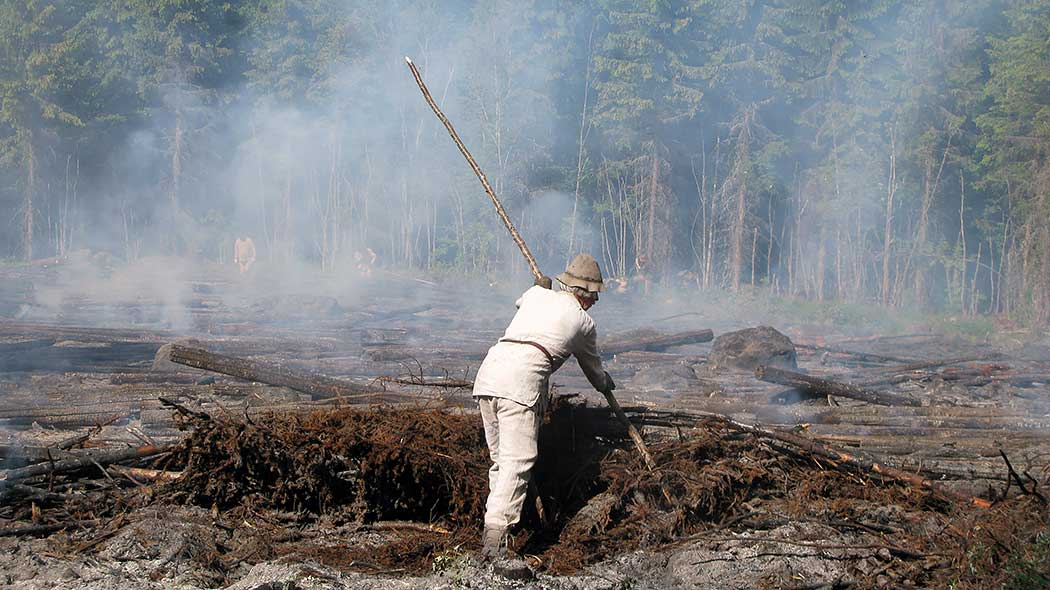 A traditional slash-and-burn sweeps around a burnt birch. Smoke rises from the field. In the background there is dense forest.