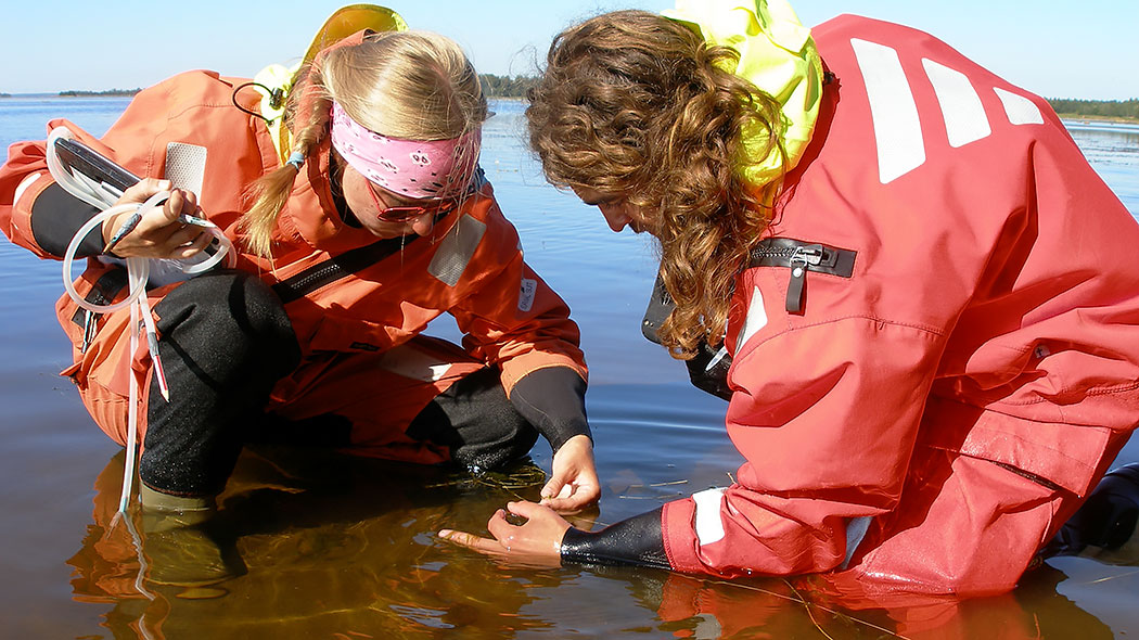 Two marine biologists are investigating seawater close to the shore.