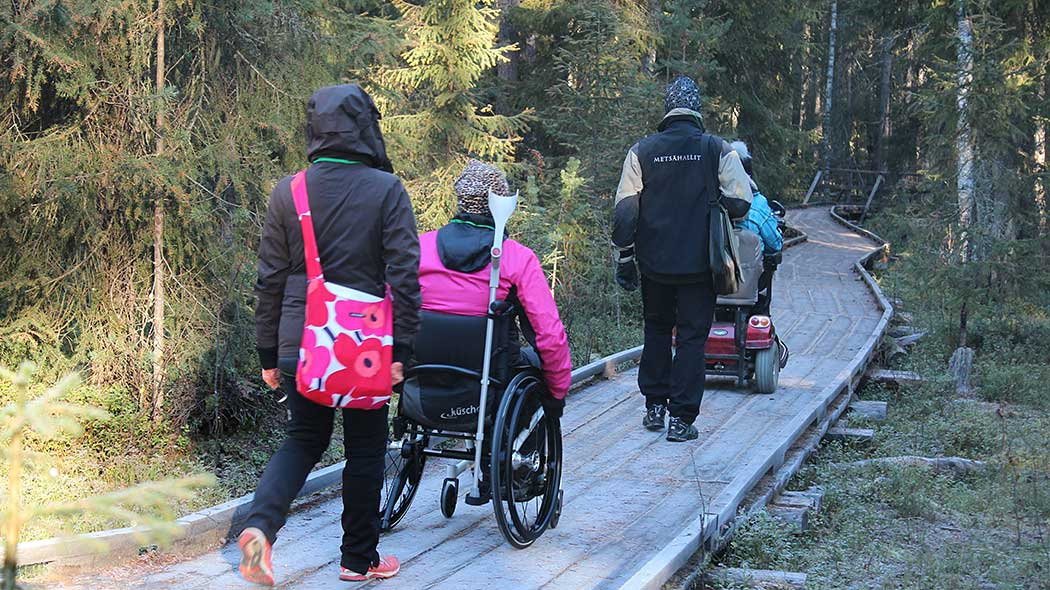Hikers on a wooden accessible trail. Two of the hikers are in wheelchairs. There is coniferous forest along the wooden route.