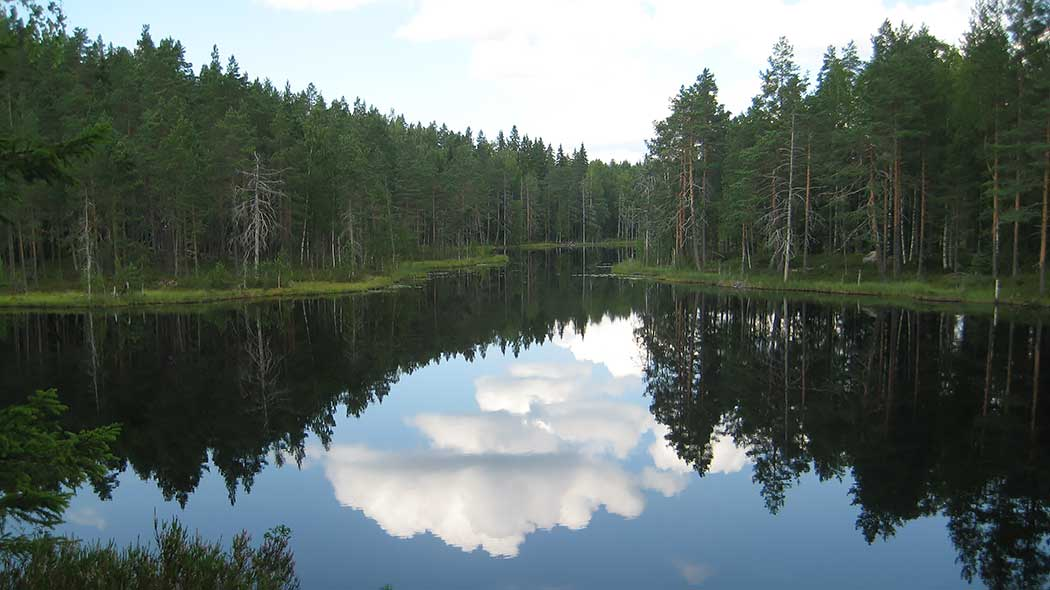 Calm surface of the lake mirrors the surrounding forest and partially clouded sky.
