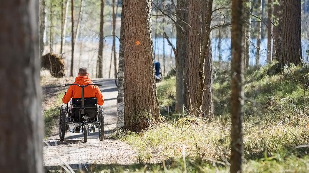 Getting practical exercise the natural way in the national landscape of Punkaharju on a springtime nature path. Photo: Petri Jauhiainen