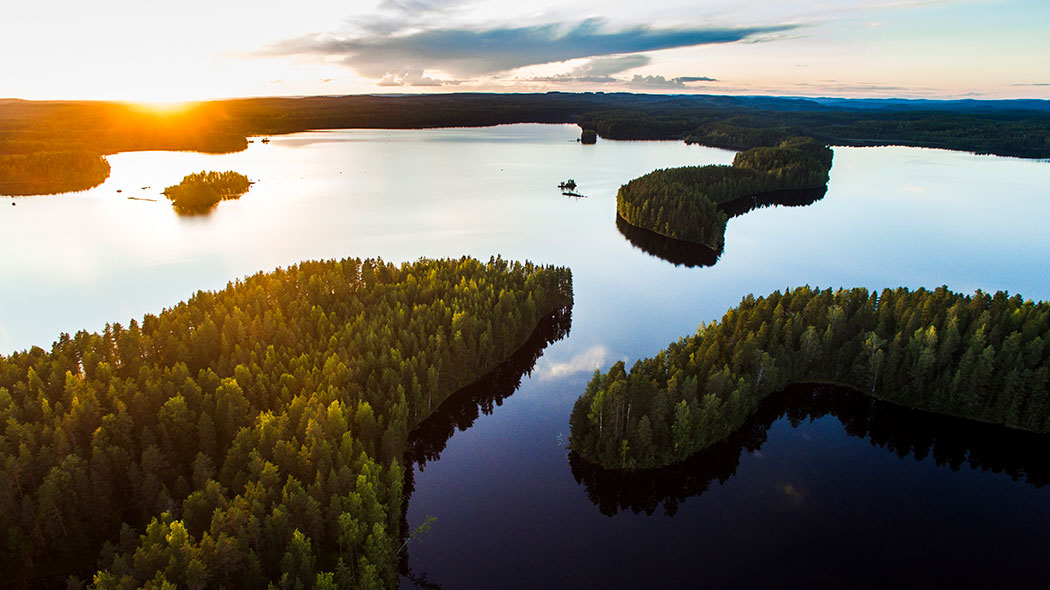 A summer landscape photographed from above during sunset. A calm lake, forest-covered islands and peninsulas.