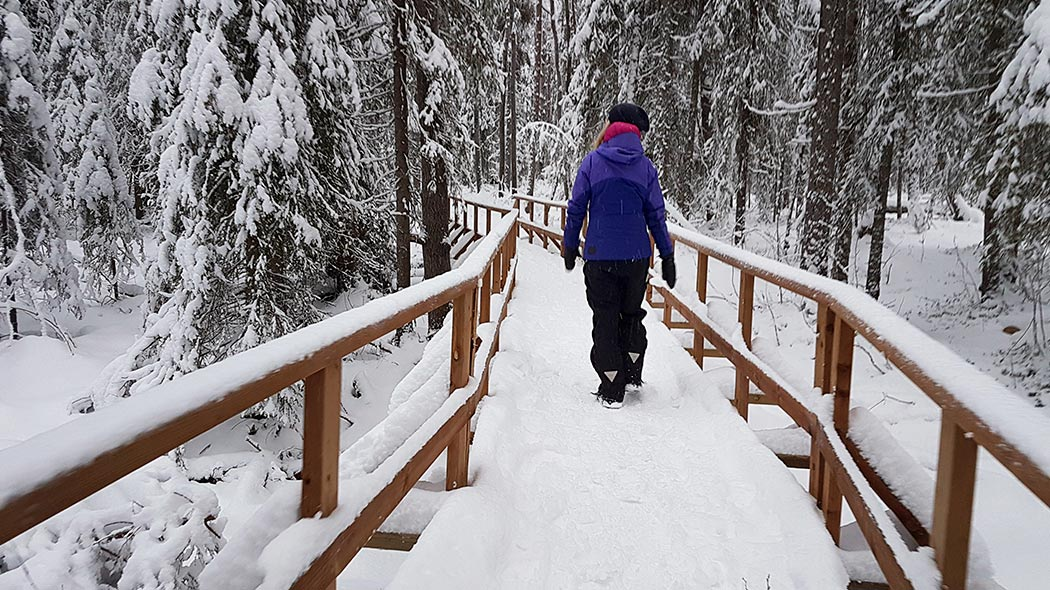 Be careful, there can be a lot of snow packed on the trails in winter time. Image: Anna Pakkanen