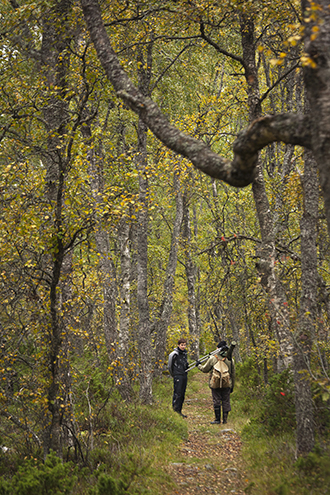 An autumn picture of two persons walking along a path through a forest.