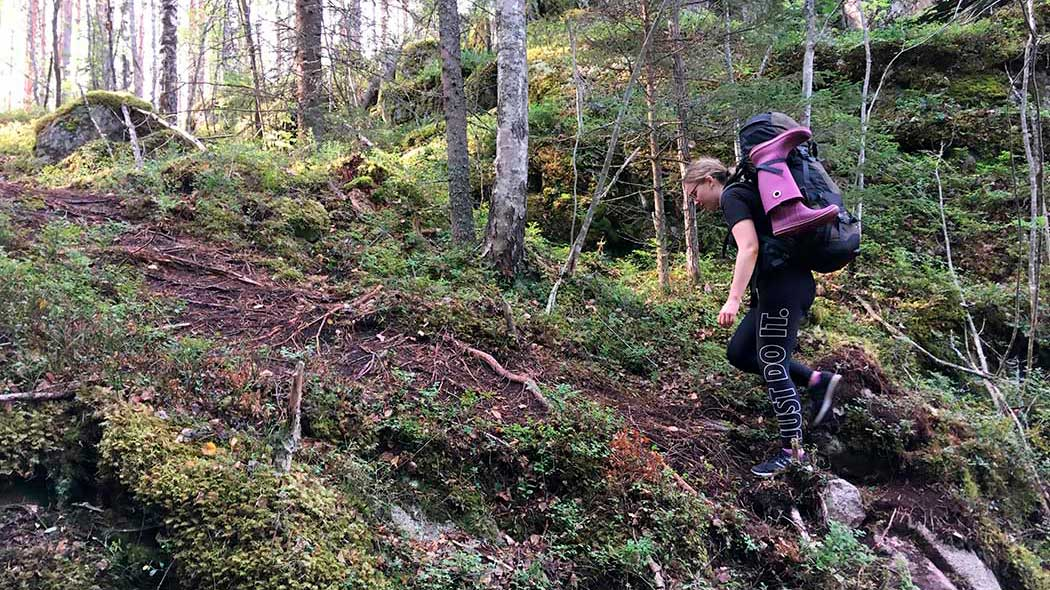 A hiker with a backpack is walking up a hill with many rhizomes. The hiker is carrying rubber boots with their backpack.