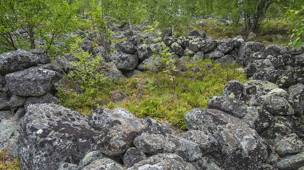 Large stones on the ground in a summery forest. The stones are forming the remains of a building.
