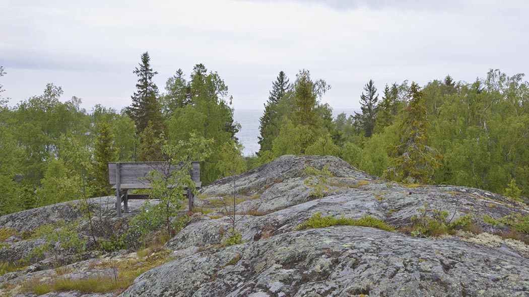 A sea landscape opens up behind the treetops seen from a tall rock. There is a wooden bench on top of the rock.