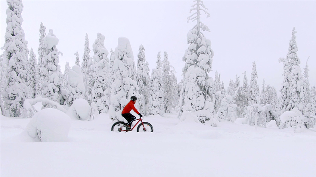Mountain biker riding a fatbike on a winter trail across a snowy forest.
