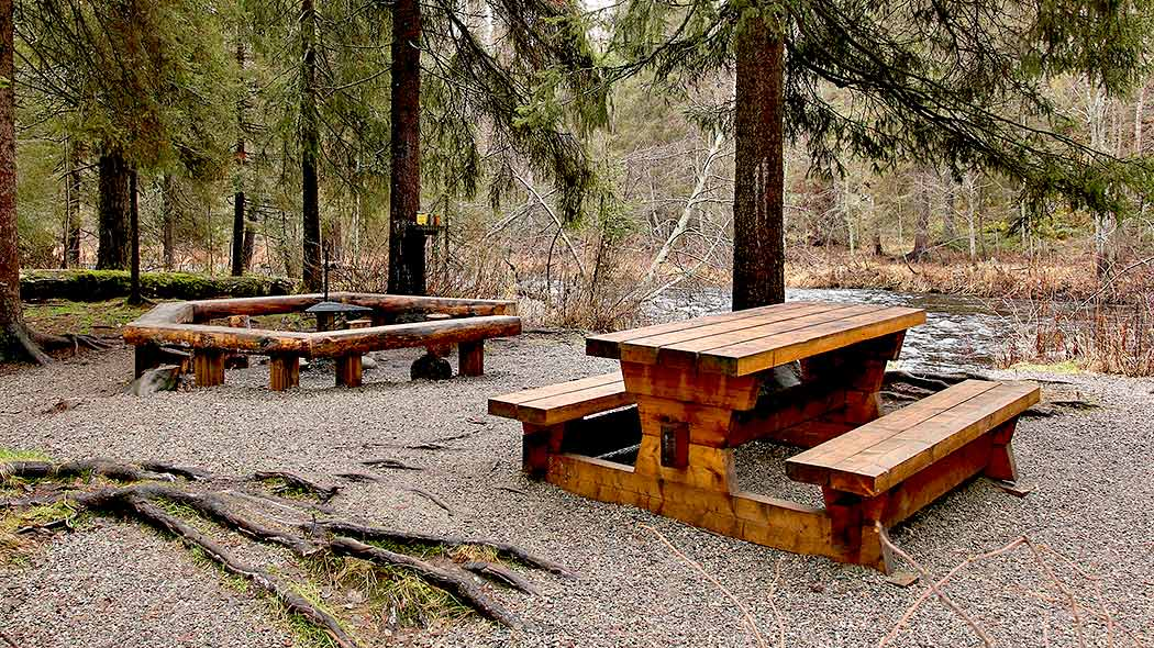 A campfire place and a table with benches. There are spruce trees and a pond in the background.