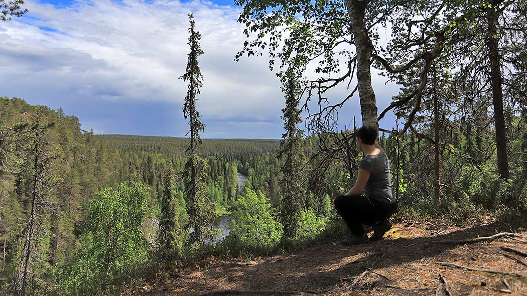 A squatting hiker surrounded by lush forest is looking at the Oulanka canyon. A river flows through the canyon floor.