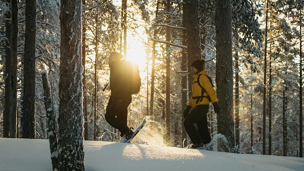 Two people are walking with snow-shoes in the snow-covered forest. The sun is shining behind the trees.