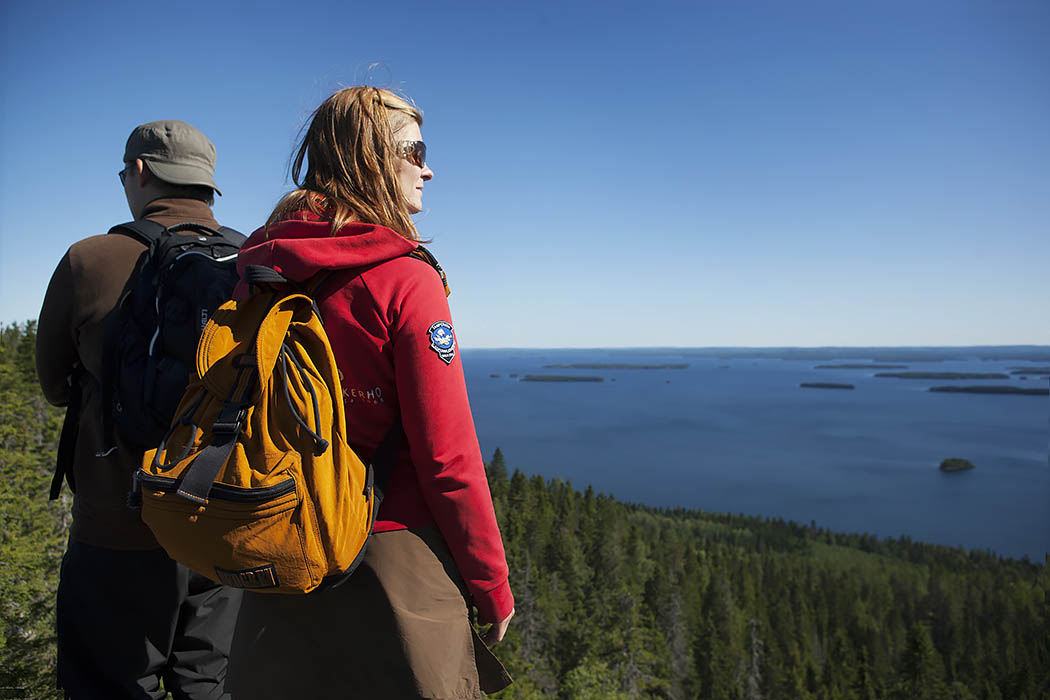 Koli National Park. Photo: Johanna Kukkola