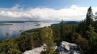 Koli National Park. Photo: Jarkko Kuiri.