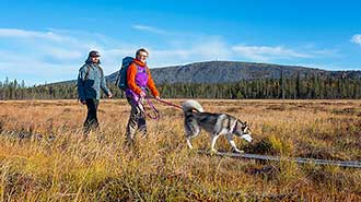 Pyhä-Luosto National Park. Photo: Teemu Kuisma.