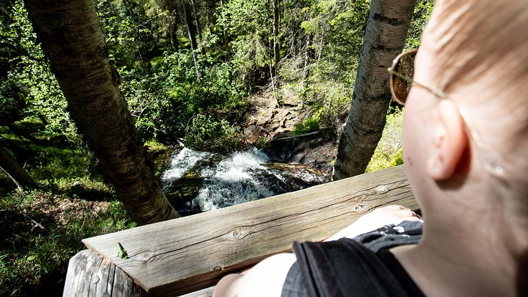 A woman standing behind a wooden fence looking at the flowing water. The stream is flowing over the flat rocks through the forest.